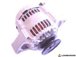 Ligier / Microcar / Lombardini Lichtmaschine
